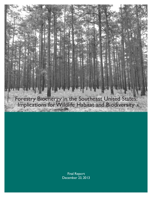 Forestry Bioenergy in the Southeast United States: Implications for Wildlife Habitat and Biodiversity  Final Report Decemb...