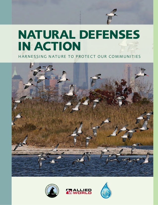 NATURAL DEFENSES IN ACTION HARNESSING NATURE TO PROTECT OUR COMMUNITIES