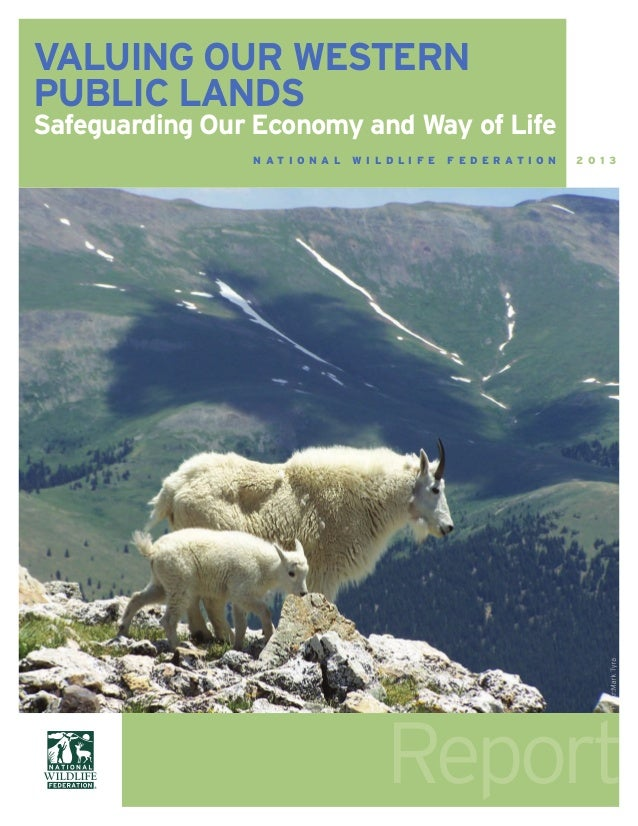 Report VALUING OUR WESTERN PUBLIC LANDS Safeguarding Our Economy and Way of Life N A T I O N A L W I L D L I F E F E D E R...