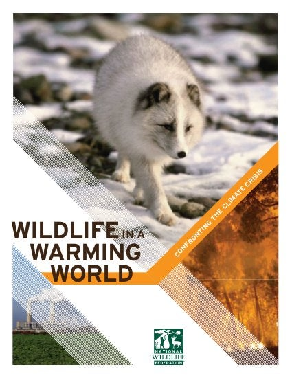 Wildlife Rochester | Animals & Environment