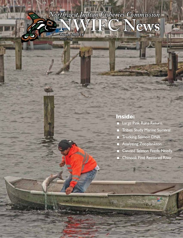 Northwest Indian Fisheries Commission  NWIFC News Winter 2013/14 nwifc.org  Inside: ■■ Large Pink Runs Return ■■ Tribes St...