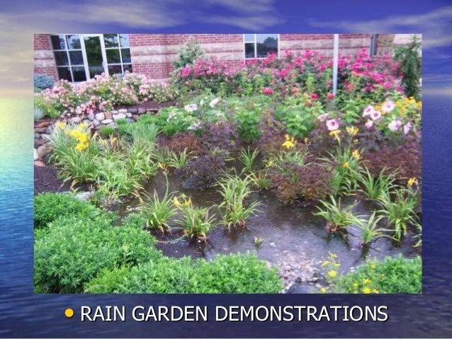 • RAIN GARDEN DEMONSTRATIONS