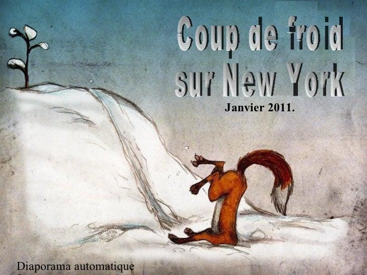 Coup de froid sur New York Diaporama automatique Janvier 2011.