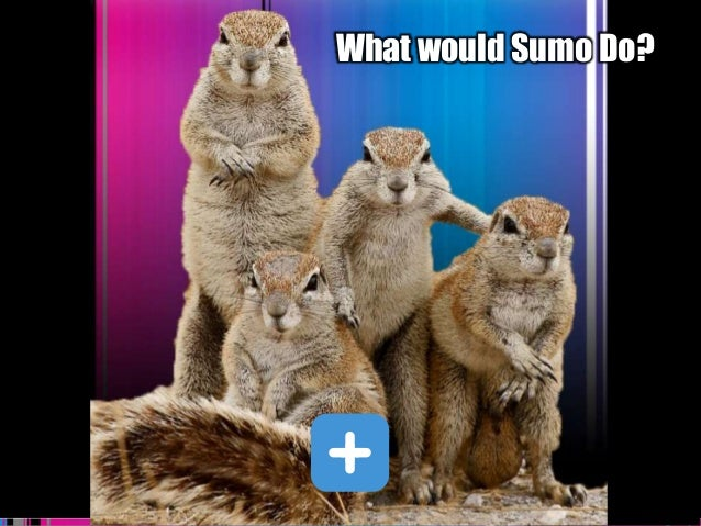 Sumo Logic Confidential What would Sumo Do?