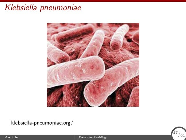 Klebsiella pneumoniae klebsiella-pneumoniae.org/ Max Kuhn Predictive Modeling 47/61 47/61