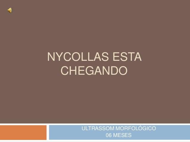 NYCOLLAS ESTA  CHEGANDO  ULTRASSOM MORFOLÓGICO  06 MESES