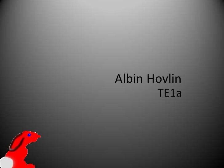 Albin Hovlin<br />TE1a<br />