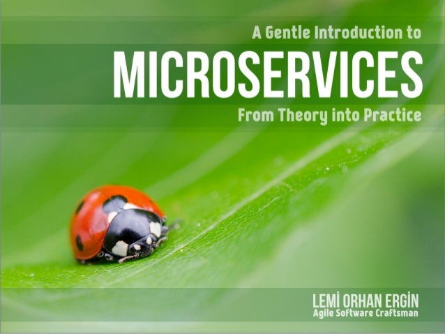 A Gentle Introduction to Micro Services - From Theory into Practice