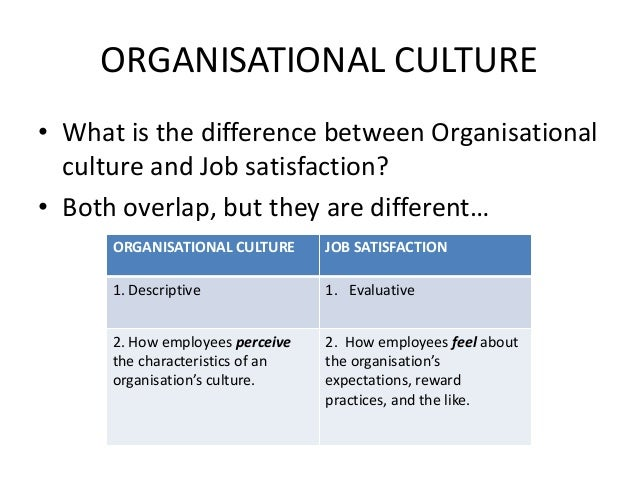 management and safety first culture essay Some view safety culture as a management issue but so fuzzy to the  the first  question, haukelid (2008) argues that it is possible to change a culture, but it.