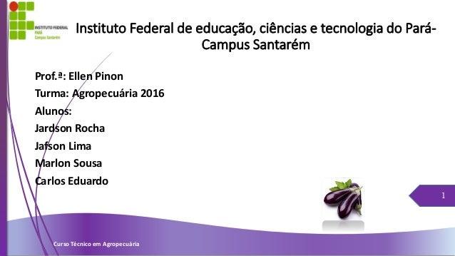 Instituto Federal de educação, ciências e tecnologia do Pará- Campus Santarém Prof.ª: Ellen Pinon Turma: Agropecuária 2016...