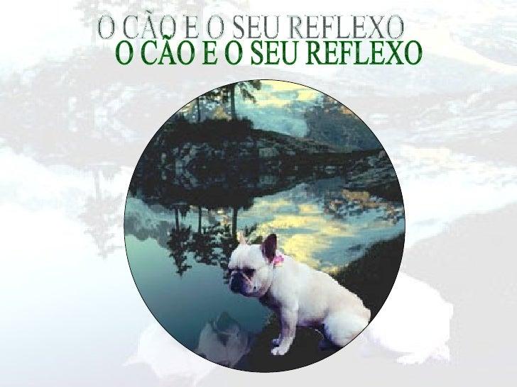 O CÃO E O SEU REFLEXO