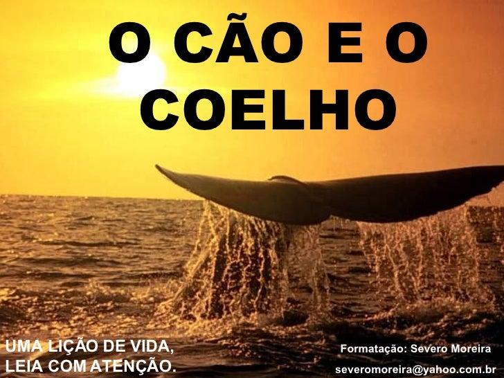 O CÃO E O COELHO Formatação: Severo Moreira [email_address] UMA LIÇÃO DE VIDA, LEIA COM ATENÇÃO.