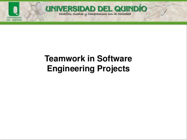 Teamwork in Software Engineering Projects