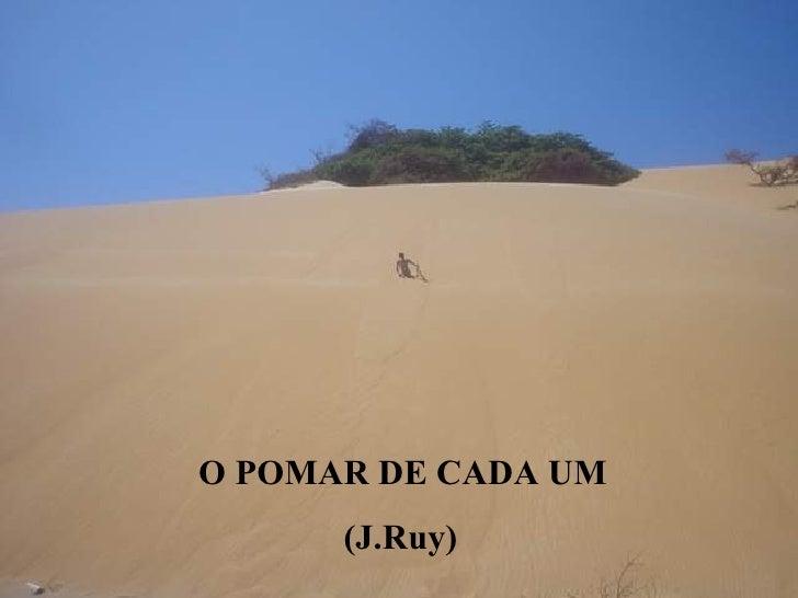 O POMAR DE CADA UM (J.Ruy)