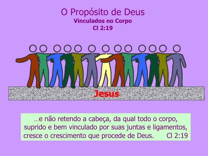 O Propósito de Deus Vinculados no Corpo Cl 2:19 ... e não retendo a cabeça, da qual todo o corpo, suprido e bem vinculado ...