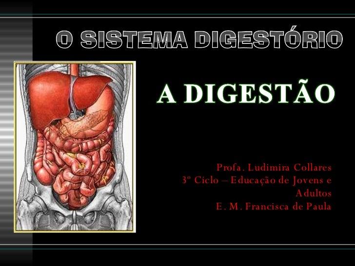 Profa. Ludimira Collares 3º Ciclo – Educação de Jovens e Adultos E. M. Francisca de Paula