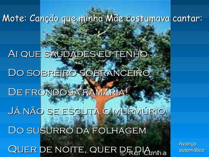 Mote: Canção que minha Mãe costumava cantar: Ai que saudades eu tenho Do sobreiro sobranceiro De frondosa ramaria! Já não ...
