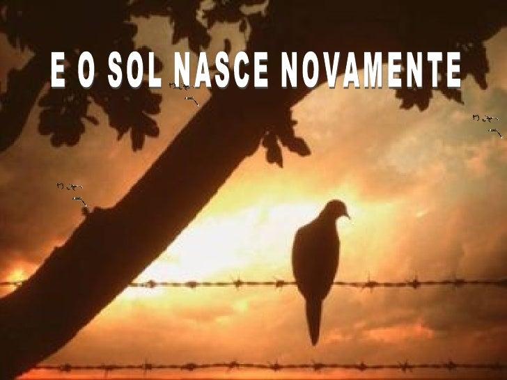 E O SOL NASCE NOVAMENTE
