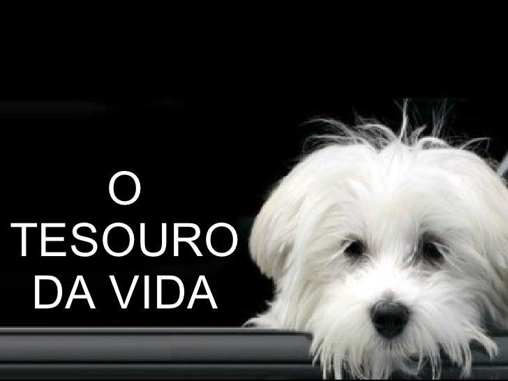 O TESOURO DA VIDA