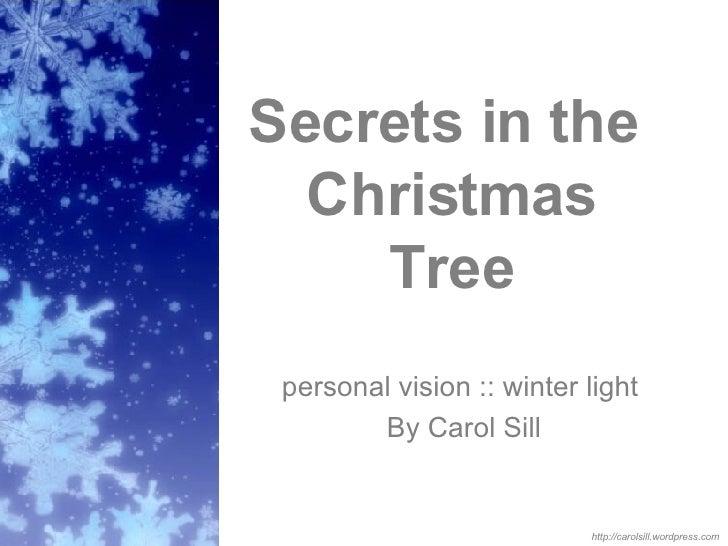 Secrets in the  Christmas Tree personal vision :: winter light  By Carol Sill http://carolsill.wordpress.com