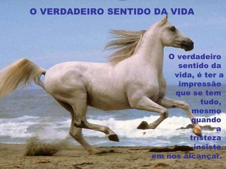 O VERDADEIRO SENTIDO DA VIDA O verdadeiro  sentido da  vida, é ter a impressão  que se tem  tudo,  mesmo  quando  a  trist...