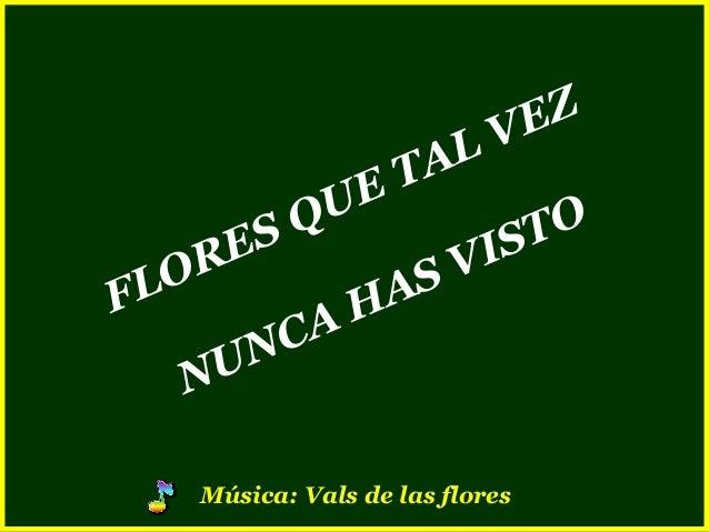 FLORES QUE TAL VEZ NUNCA HAS VISTO Música: Vals de las flores