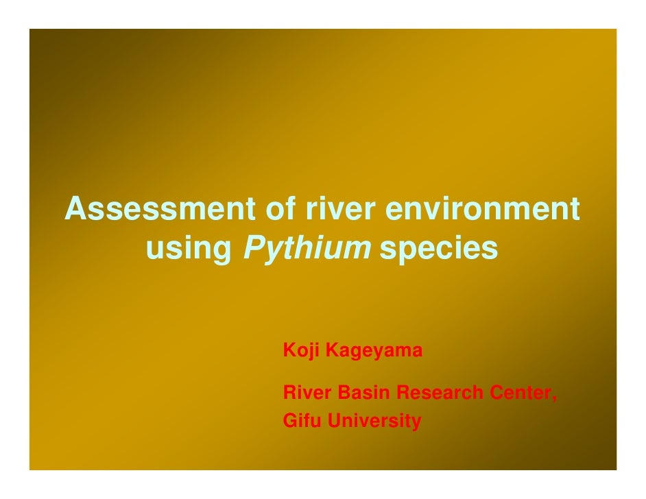 Assessment of river environment     using Pythium species                Koji Kageyama               River Basin Research ...