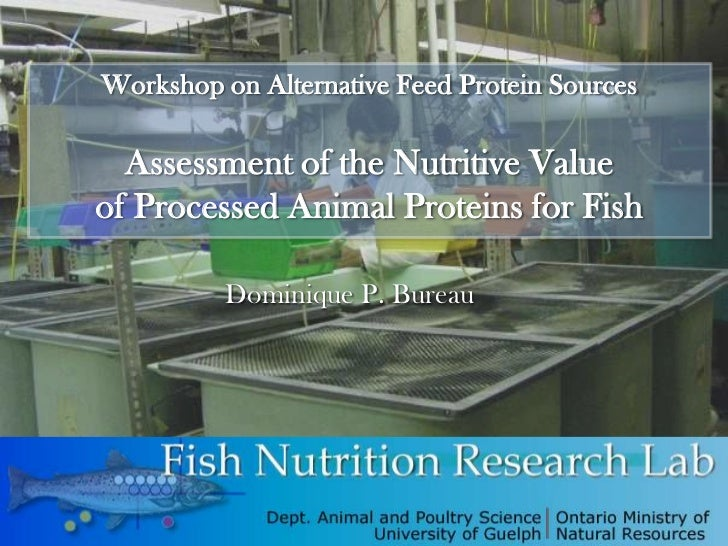 Workshop on Alternative Feed Protein Sources  Assessment of the Nutritive Valueof Processed Animal Proteins for Fish      ...