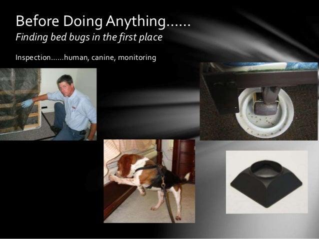 Manual, Heat Treatment and Fumigation Options Slide 2