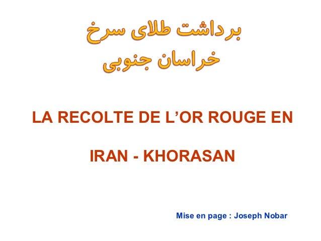 LA RECOLTE DE L'OR ROUGE EN     IRAN - KHORASAN              Mise en page : Joseph Nobar