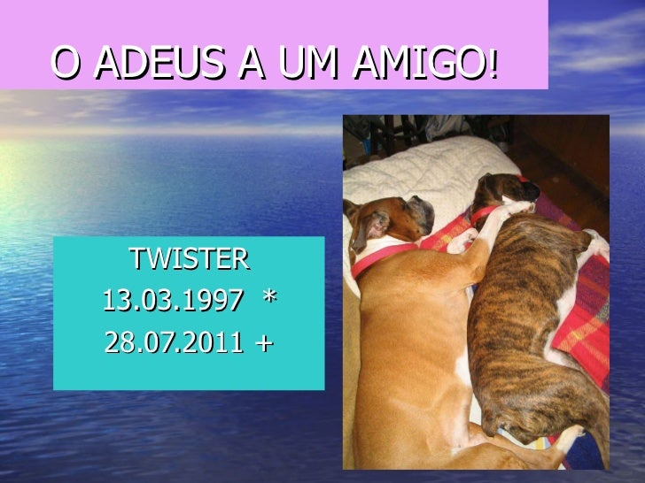 O ADEUS A UM AMIGO ! TWISTER 13.03.1997  * 28.07.2011 +