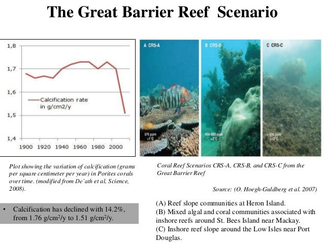 Ocean Acidification Cause Impact And Mitigation