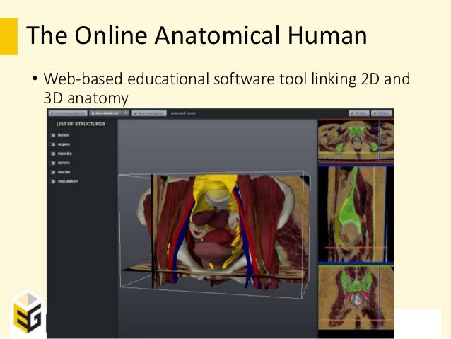 The Online Anatomical Human: Web-based Anatomy Education