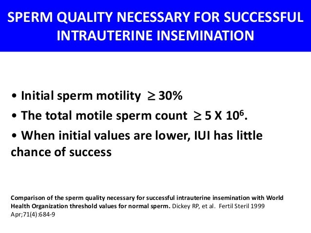 Sperm counts for a successful iui
