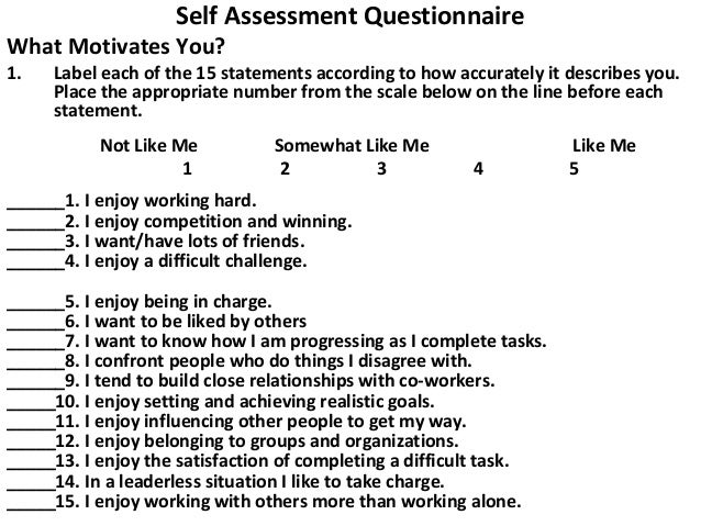 Self Assessment Questionnaire  What Motivates You? 1.  Label each of the 15 statements according to how accurately it desc...