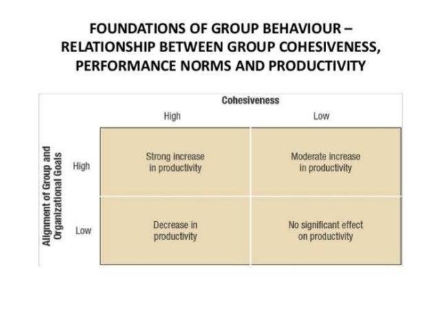 foundations of behavior The foundations of behavior: the beliefs  preferences, and constraints model  herbert gintis central european university, budapest, hungary & santa fe.
