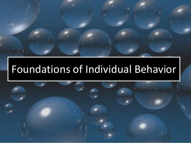 Foundations of Individual Behavior  1