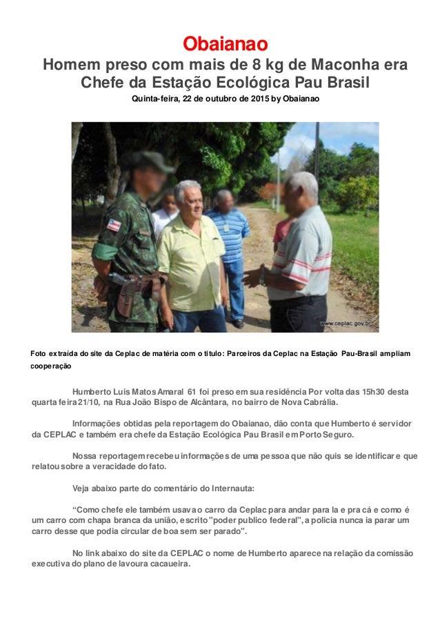 Obaianao Homem preso com mais de 8 kg de Maconha era Chefe da Estação Ecológica Pau Brasil Quinta-feira, 22 de outubro de ...