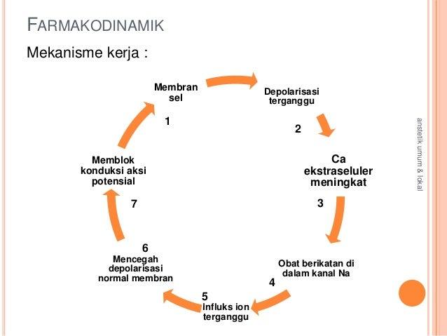 farmakokinetik kortikosteroid pdf
