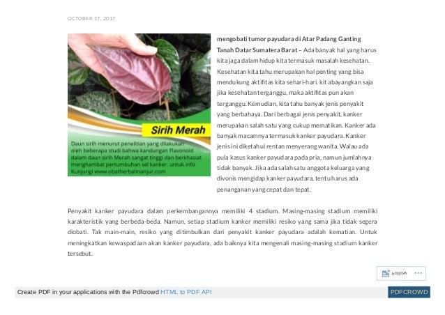 Obat herbal kanker payudara stadium 4