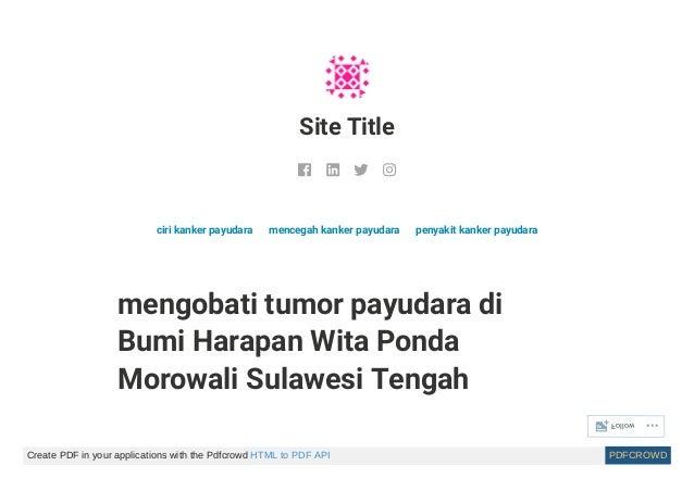 Obat herbal kanker payudara stadium akhir