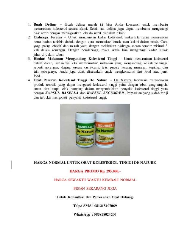 Tanaman Obat untuk Asam Urat dan Kolesterol