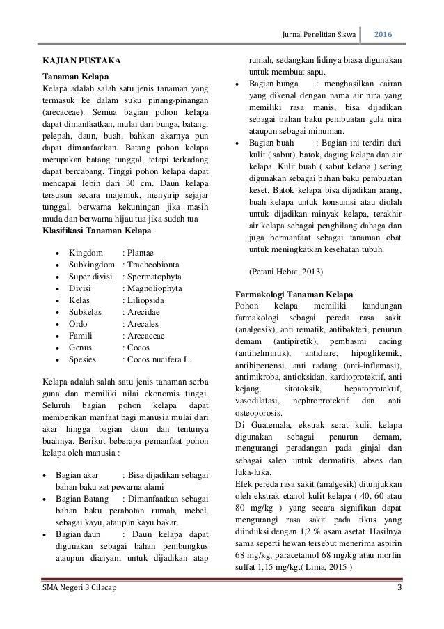Penggunaan Cocopeat sebagai Media Tanam - BibitBunga.com