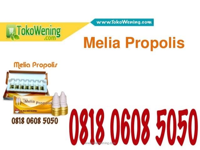www.TokoWening.com Melia Propolis