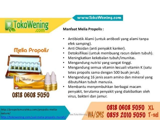0818 0608 5050 Obat Propolis Untuk Kanker Payudara, Penggunaan Propolis Untuk Kanker Payudara Slide 3