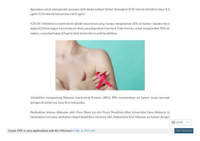 Obat untuk kanker payudara stadium akhir