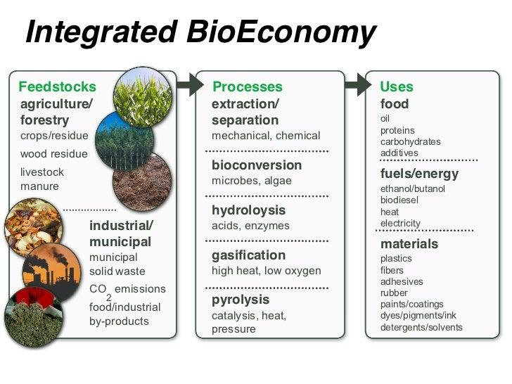 Integrated BioEconomyFeedstocks                        Processes               Usesagriculture/                      extra...