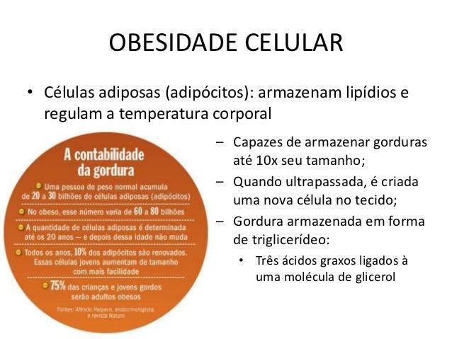 OBESIDADE CELULAR• Células adiposas (adipócitos): armazenam lipídios e  regulam a temperatura corporal                    ...