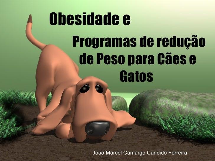 Obesidade e  Programas de redução de Peso para Cães e Gatos  João Marcel Camargo Candido Ferreira