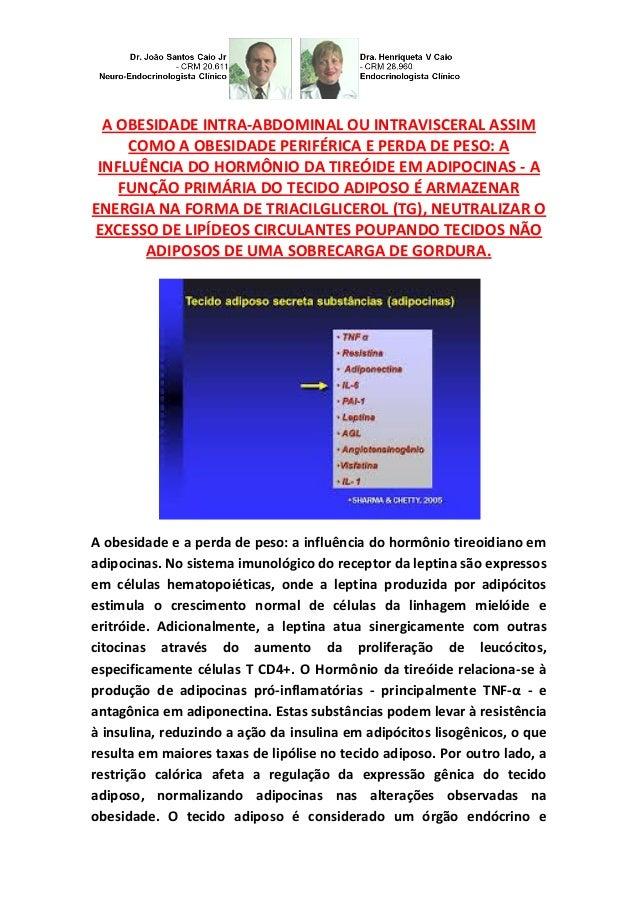 A OBESIDADE INTRA-ABDOMINAL OU INTRAVISCERAL ASSIM COMO A OBESIDADE PERIFÉRICA E PERDA DE PESO: A INFLUÊNCIA DO HORMÔNIO D...
